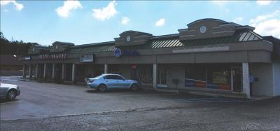 Clinton Township Commercial Lease For Lease: 36558 Moravian