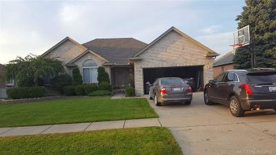 Macomb Twp Single Family Home For Sale: 21335 Vesper Dr