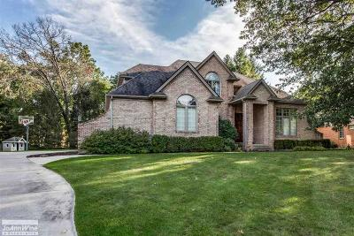 St. Clair Single Family Home For Sale: 2625 Whitney