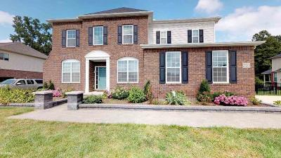 Chesterfield Single Family Home For Sale: 27215 Superior