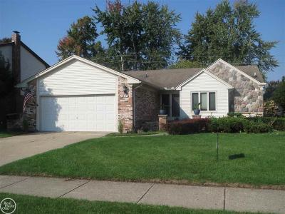 Macomb Twp Single Family Home For Sale: 16119 Haverhill