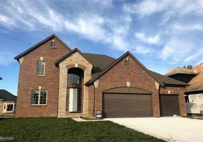 Macomb Twp Single Family Home For Sale: 21997 Rio Grande