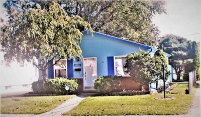 Eastpointe Single Family Home For Sale: 23702 Tuscany Avenue