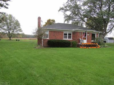 Ray Twp Single Family Home For Sale: 22664 32 Mile