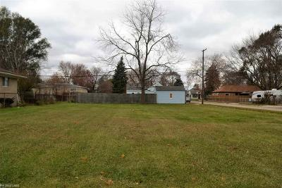 Macomb Residential Lots & Land For Sale: 20843 Montrose