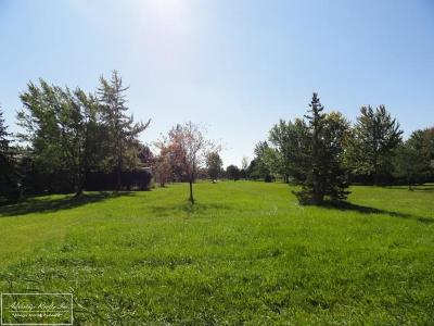 Clinton Township Residential Lots & Land For Sale: Dunham