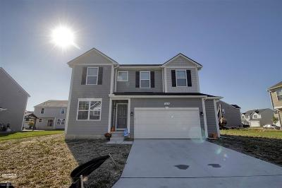Chesterfield Single Family Home For Sale: 30644 Sarah Melisa Dr.