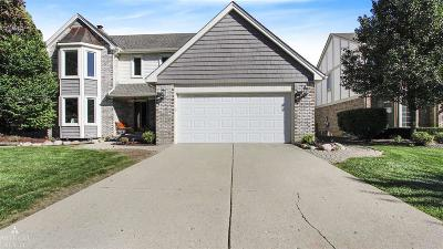 Clinton Township Single Family Home For Sale: 41874 Alden Dr