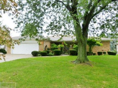 Sterling Heights Single Family Home For Sale: 37270 Andrew