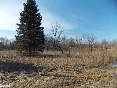 Chesterfield Residential Lots & Land For Sale: 32850 26 Mile