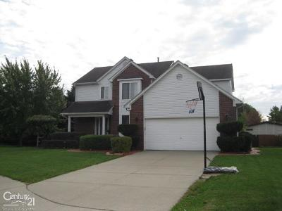Chesterfield Single Family Home For Sale: 29358 Shirah Lane