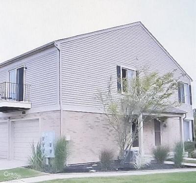 Clinton Township Condo/Townhouse For Sale: 44600 Connecticut Ct