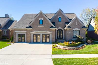 Shelby Twp Single Family Home For Sale: 54929 Lawson Creek Dr.