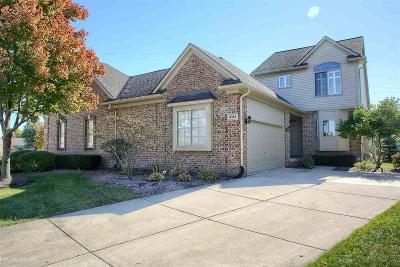 Clinton Township Condo/Townhouse For Sale: 17354 Suffield