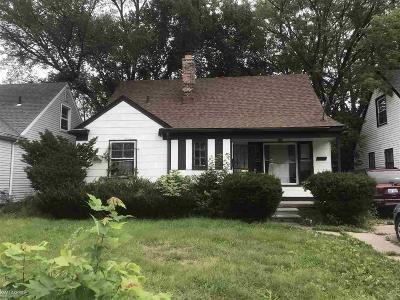 Detroit Single Family Home For Sale: 18572 Heyden St