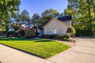 Troy Single Family Home For Sale: 6672 Westpointe Dr