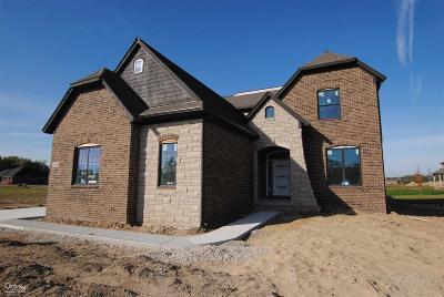 Macomb Single Family Home For Sale: 21965 Rio Grande