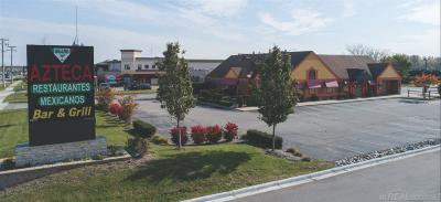 Commercial Lease For Lease: 13100 Hall Road