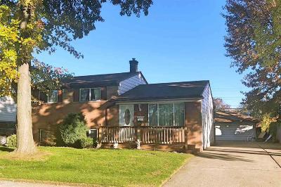 Fraser Single Family Home For Sale: 17455 Grettel