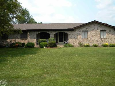 Clinton Township Single Family Home For Sale: 18818 Millar