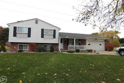 Clinton Township Single Family Home For Sale: 38294 Fernhill
