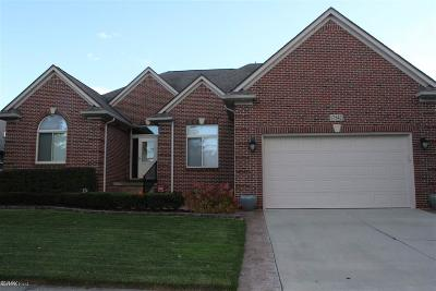 Clinton Township Single Family Home For Sale: 17542 Goldeneye