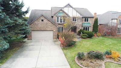 Shelby Twp Single Family Home For Sale: 48285 Lake Land