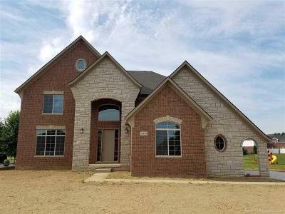 Macomb Single Family Home For Sale: 16436 Via Mera
