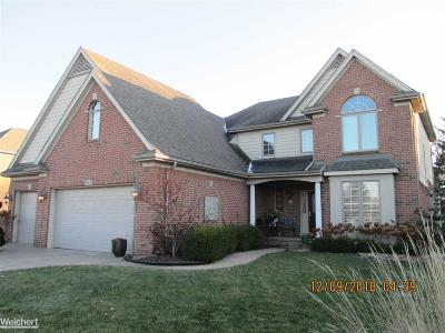 Macomb Twp Single Family Home For Sale: 21830 Brantingham Rd.