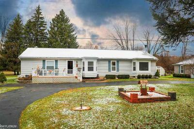 Algonac Single Family Home For Sale: 6372 Swartout Road