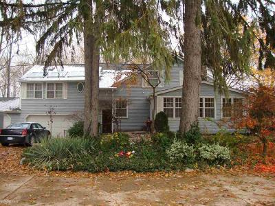 Clinton Township Single Family Home For Sale: 38150 Woodcrest