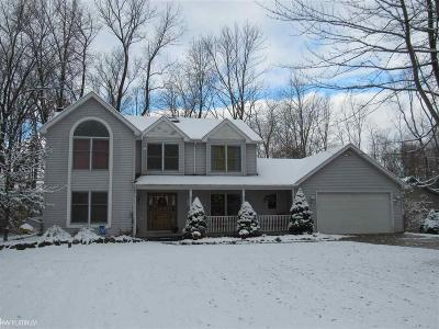 Macomb, St. Clair Single Family Home For Sale: 6219 Wildrose Ln