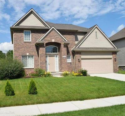 Sterling Heights Single Family Home For Sale: 41817 Gainsley Drive