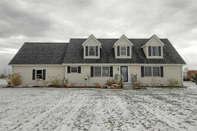 Romeo, Richmond Single Family Home For Sale: 78883 Deland Rd