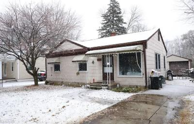 Clinton Township Single Family Home For Sale: 39254 Ormsby