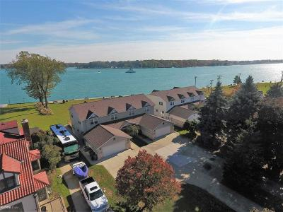 St. Clair Condo/Townhouse For Sale: 1414 Saint Clair River