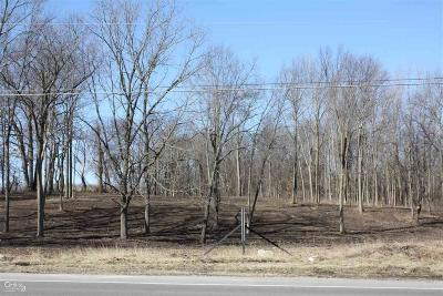 Lapeer Residential Lots & Land For Sale: S Lapeer