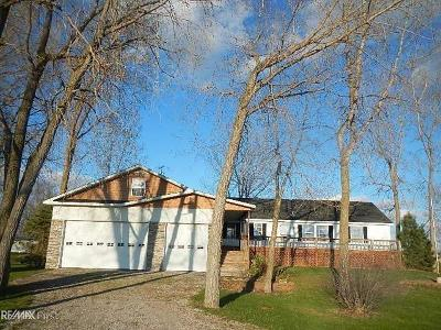 Harsens Island MI Single Family Home For Sale: $239,900