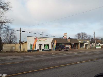 Commercial/Industrial For Sale: 10324 Dixie Hwy