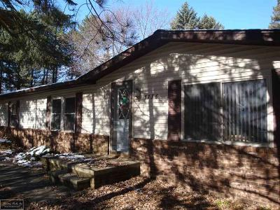 Burtchville MI Single Family Home For Sale: $169,000