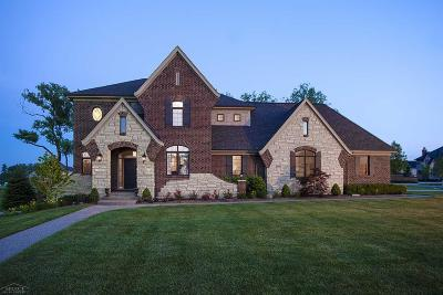 Rochester Single Family Home For Sale: 1284 Parks