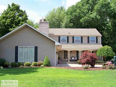 Saint Clair  Single Family Home For Sale: 497 E Meldrum Circle