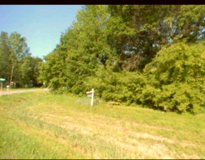 St. Clair Residential Lots & Land For Sale: Busha