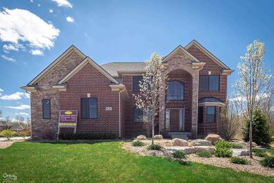 Macomb Single Family Home For Sale: 5909 Lakeview Dr