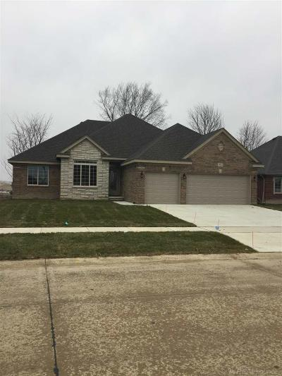 Macomb Single Family Home For Sale: 19613 Madrone
