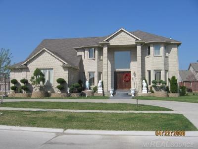 Macomb Single Family Home For Sale: 47653 Robins Nest