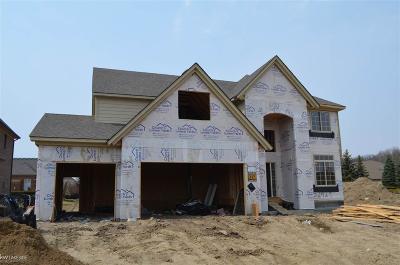 Macomb Single Family Home For Sale: 52308 Battanwood