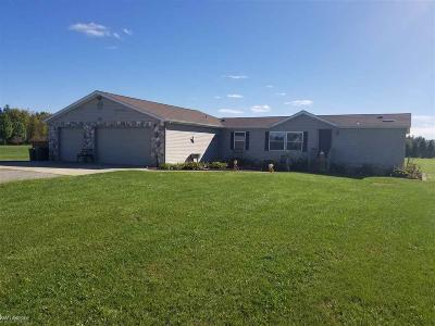 Lapeer Single Family Home For Sale: 5854 Hunters Creek