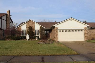 Macomb Single Family Home For Sale: 15633 Winterpark Dr