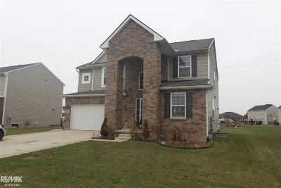 Macomb Single Family Home For Sale: 52839 Stafford Dr